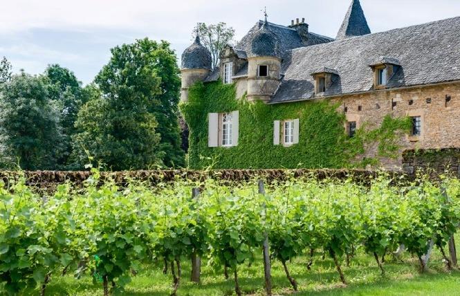 Le Château de Labro et sa Cabane Perchée 5 - Onet-le-Château